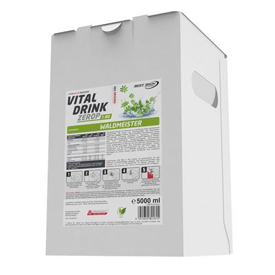 Vital Drink - Waldmeister - 5000 ml Bag in Box